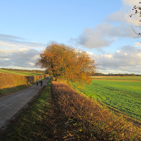 Picture of East Yorkshire